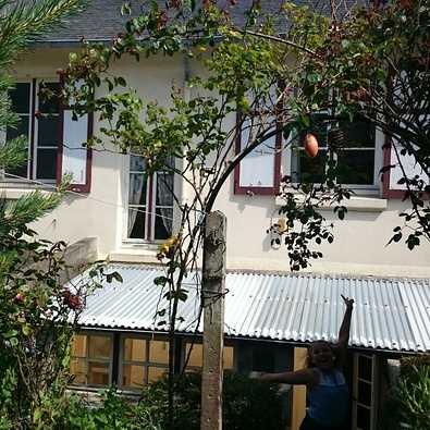 particulier – maison de ville – renovation extension